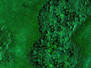 SALA Festival. CC Herkes - Cyanobacteria. Drone photography
