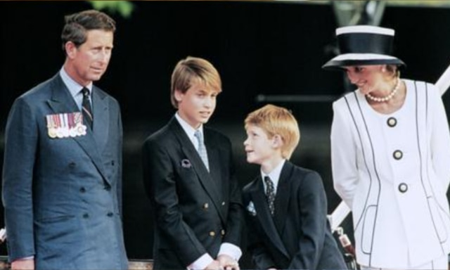 Princes Harry and William issue rare joint statement about their mum