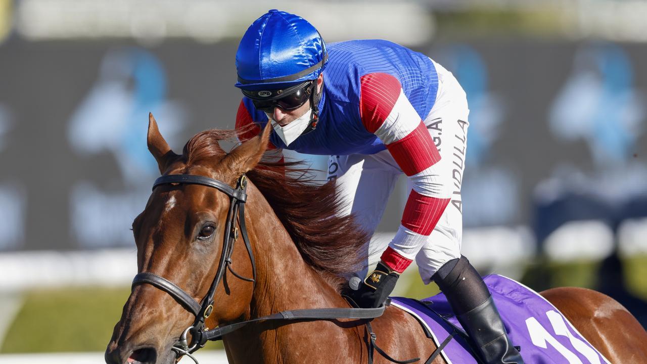 Brenton Avdulla wins on Lord Zoulander at Royal Randwick last week.