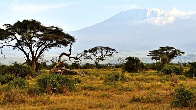 Long slog: Mt Kilimanjaro.