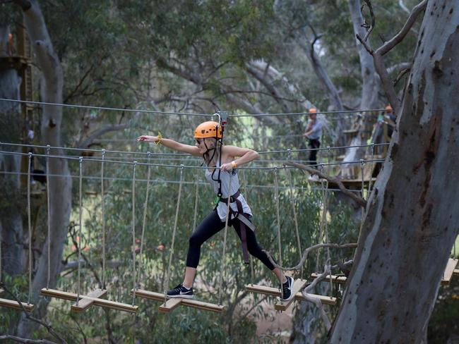 11. WALK IN THE TREETOPS Clamber up obstacles and zoom between platforms built high in a stand of majestic gumtrees in a corner of the Adelaide Park Lands. The eight courses range from Survivor-style challenges to kid-friendly options closer to the ground.
