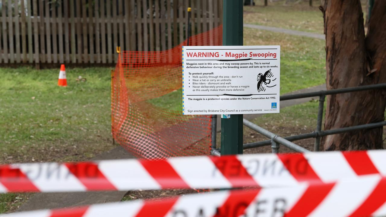 Magpie swooping warning signs have been erected around Brisbane, including at the park where Mia died. Picture: Liam Kidston