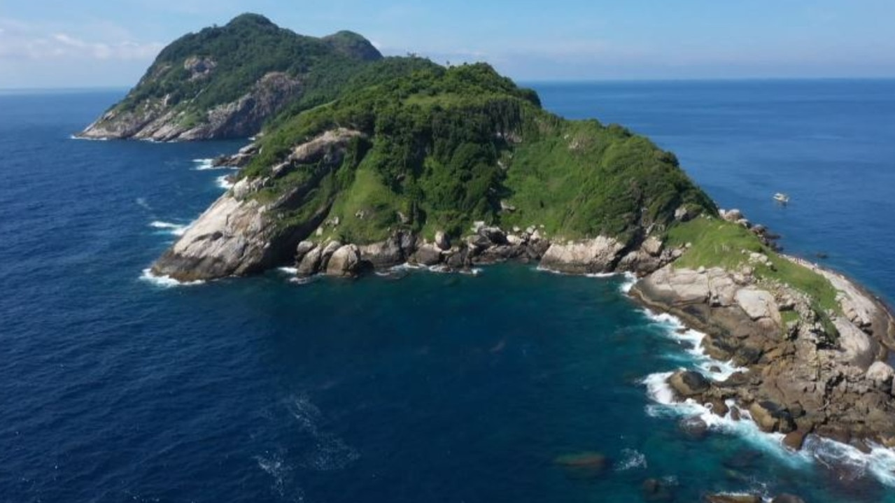 From afar, Snake Island looks like a great place for an island escape. Picture: 60 Minutes