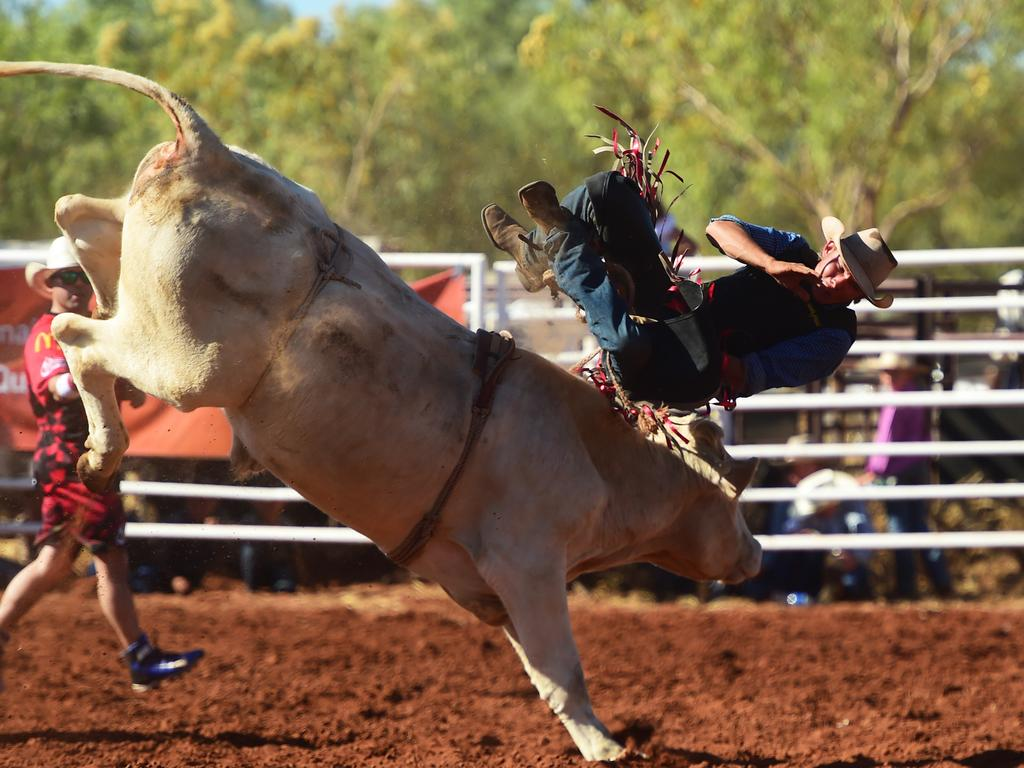 Quamby Rodeo Horse And Bull Deaths The Mercury