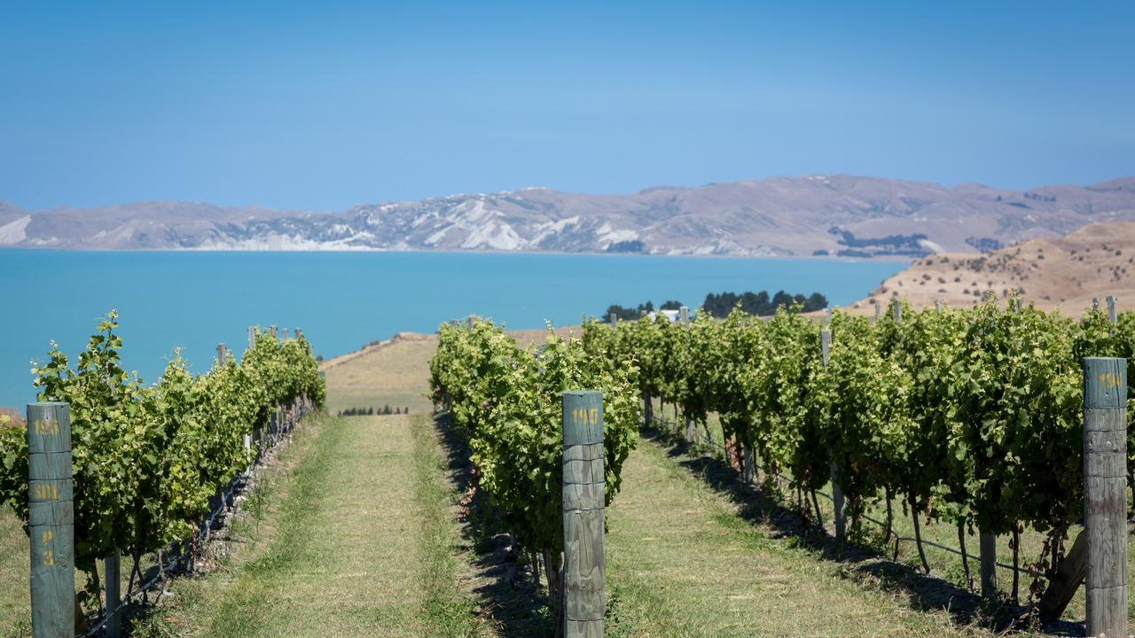 New Zealand's wineries are among the most prestigious in the world – pop across the pond and discover where you need to have your next drink. Picture: iStock