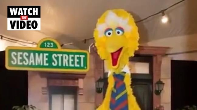 Big Bird goes missing (7 News)