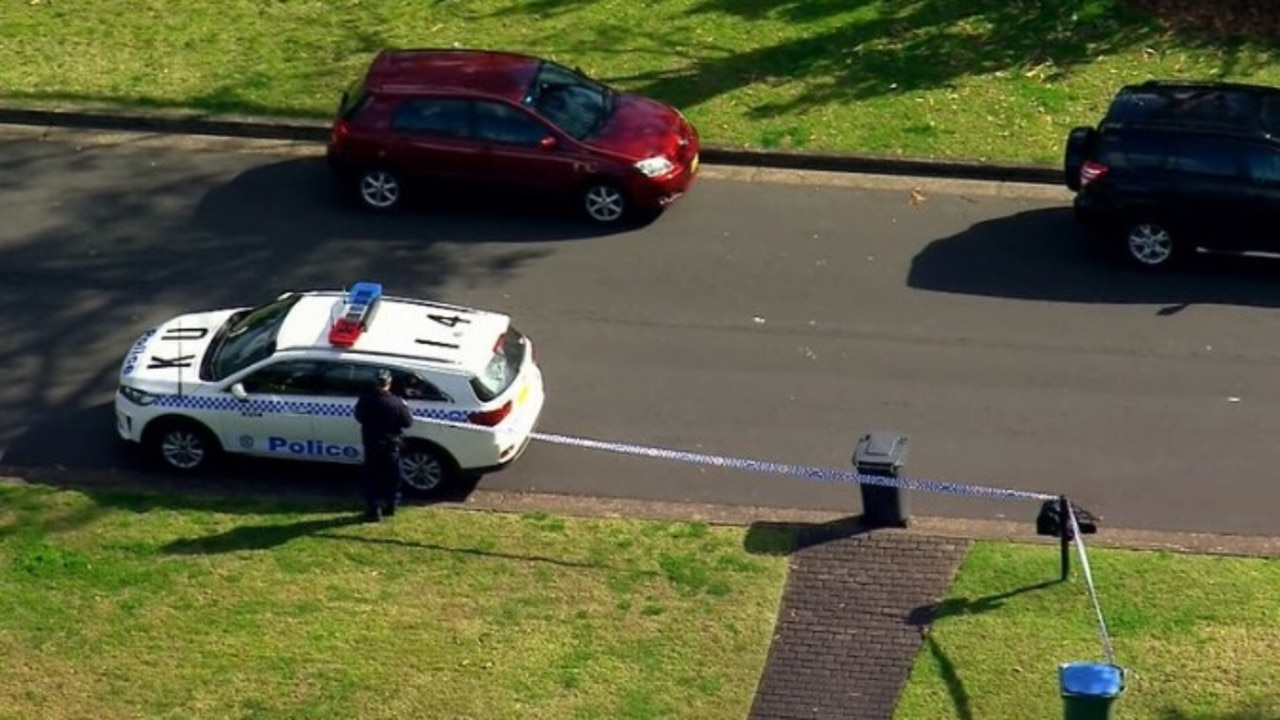 A man died after falling from a tree in Sydney. Picture 9 News