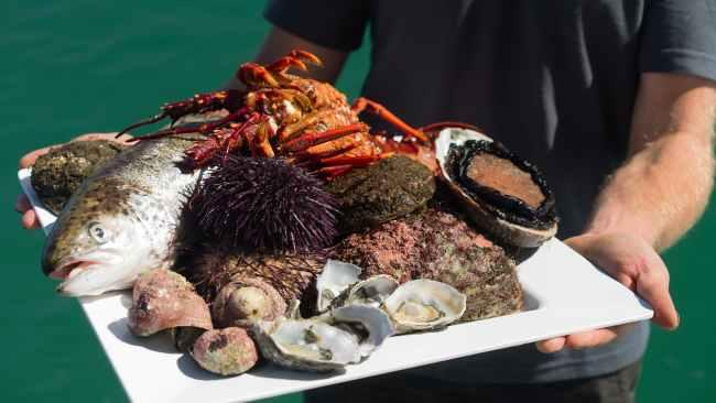 4. Deep to dish degustation First there was 'farm-to-table', now Tasmanian Wild Seafood Adventures is offering an ocean equivalent. This new multi-course dining experience takes place onboard a catamaran in Tasmania, with divers catching and serving everything from sea urchin to lobster.