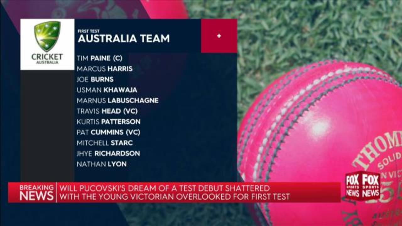 Test team named, no Pucovksi