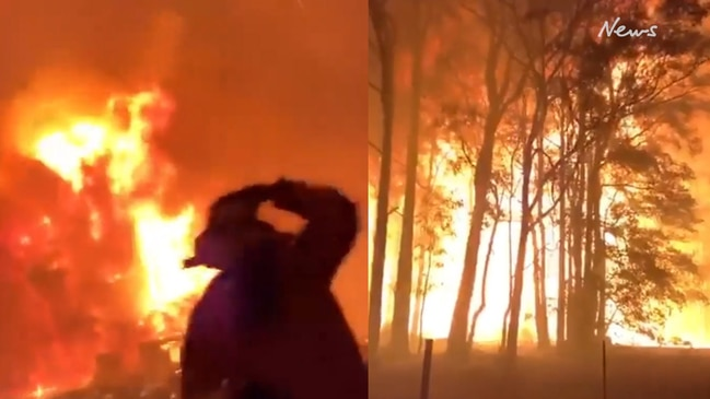 Incredible moment bushfire rapidly spreads through treetops