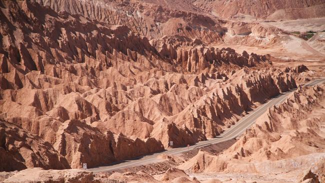 The surface of the Atacama Desert usually looks devoid of life.