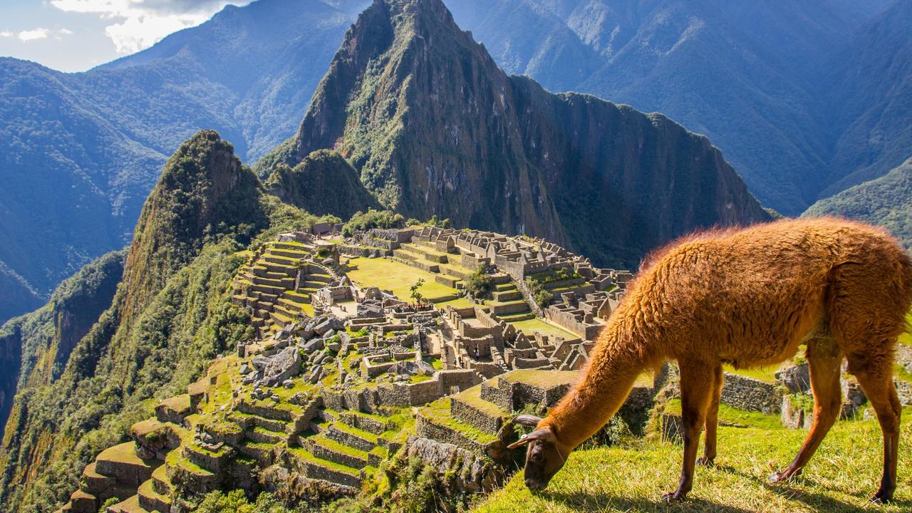 View of Macchu Picchu