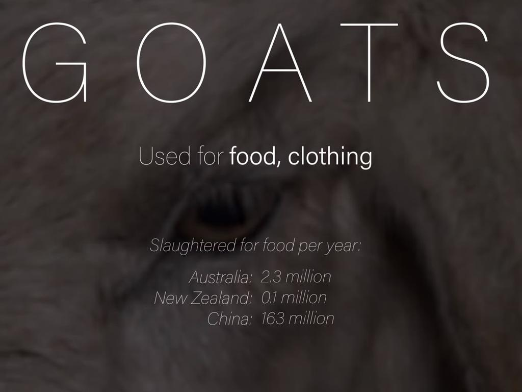 The documentary starts each animal section with dramatic statistics.