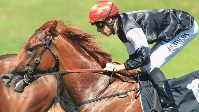 Written By maintained his unbeaten record with victory in the Pago Pago Stakes. Picture: Getty Images