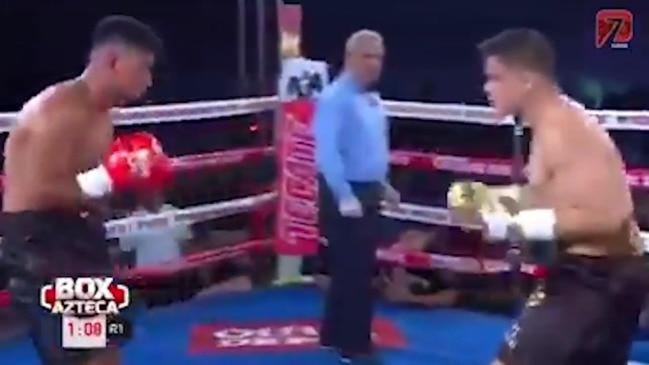 Bilal Akkawy knockout highlights
