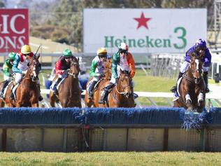 Racing | Horse Racing News and Thoroughbreds | The Cairns Post