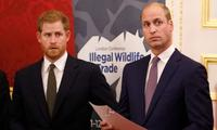 Prince William's kind gesture to Prince Harry after miscarriage