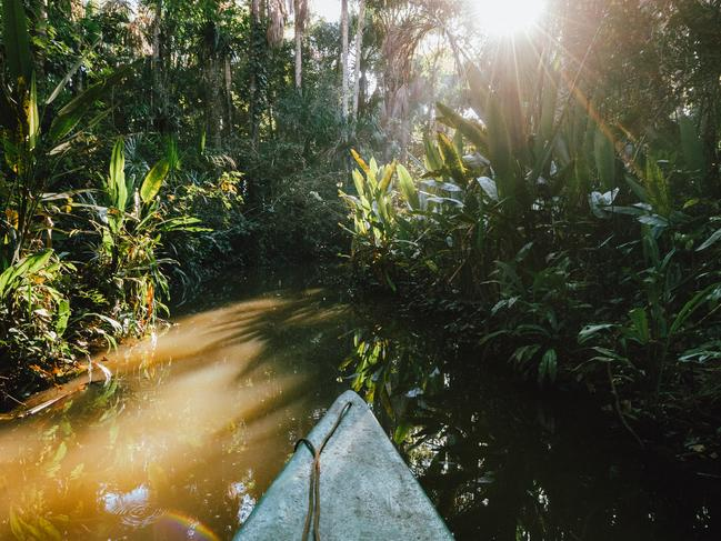 STAY AT A JUNGLE LODGE Sloths and parrots and pink dolphins, oh my! All three are wildlife you might spot on an Amazon jungle lodge stay. And with Peru made up of 60 per cent rainforest, you won't be short on accommodation options. A popular pick is Inkaterra Reserva Amazonica in Puerto Maldonado.