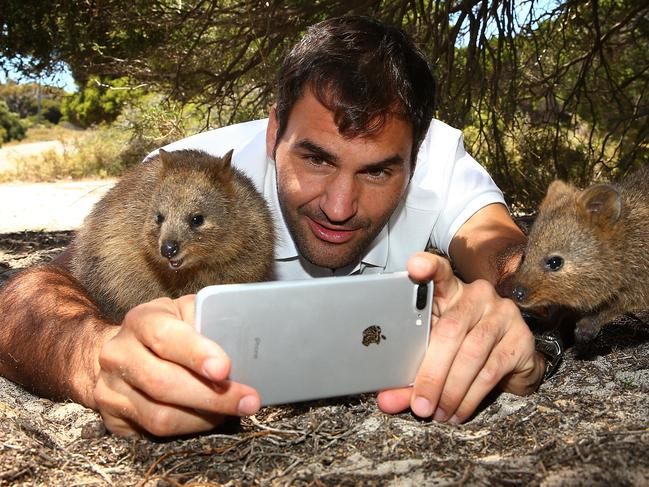 51. TAKE A QUOKKA SELFIE ON ROTTNEST ISLAND No one can resist a selfie with the world's happiest animal, not even superstar Roger Federer (see photo). These smiley creatures inhabit Australia's Rottnest Island where they are so used to visitors that they're more than happy to stop and strike a pose. Picture: Getty Images