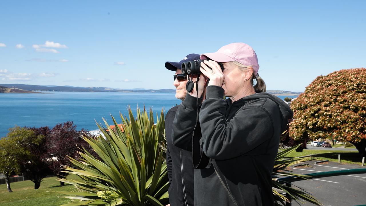 Sara and Konrad Blackman watching the whales in the River Derwent. Picture: Mireille Merlet