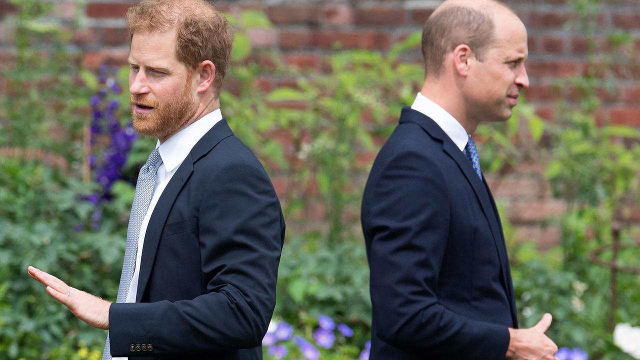 Harry and William came together to unveil a statue of their mother, Princess Diana, at the start of July. Picture: Dominic Lipinski/AFP