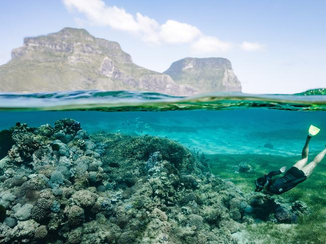 GALAPAGOS ISLANDS    AUSTRALIAN SWAP: Visit Australia's very own World Heritage-listed island paradise or spot thousands of nesting sea turtles in Queensland …
