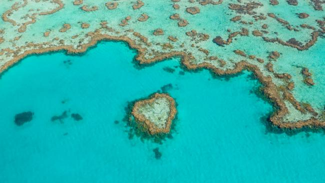 """9/14To simply say """"I love you""""Heart Reef, Great Barrier Reef  It's hard to think of a clearer way to make your feelings known than whisking your love off to an island that's shaped like a heart. Heart Island is a 30-minute helicopter ride from the chic qualia resort on Hamilton Island in the Whitsundays, and the trip includes private snorkelling and glass-bottom boat sessions at Heart Reef with Champagne. They'll get the message. Picture: Brooke Miles"""