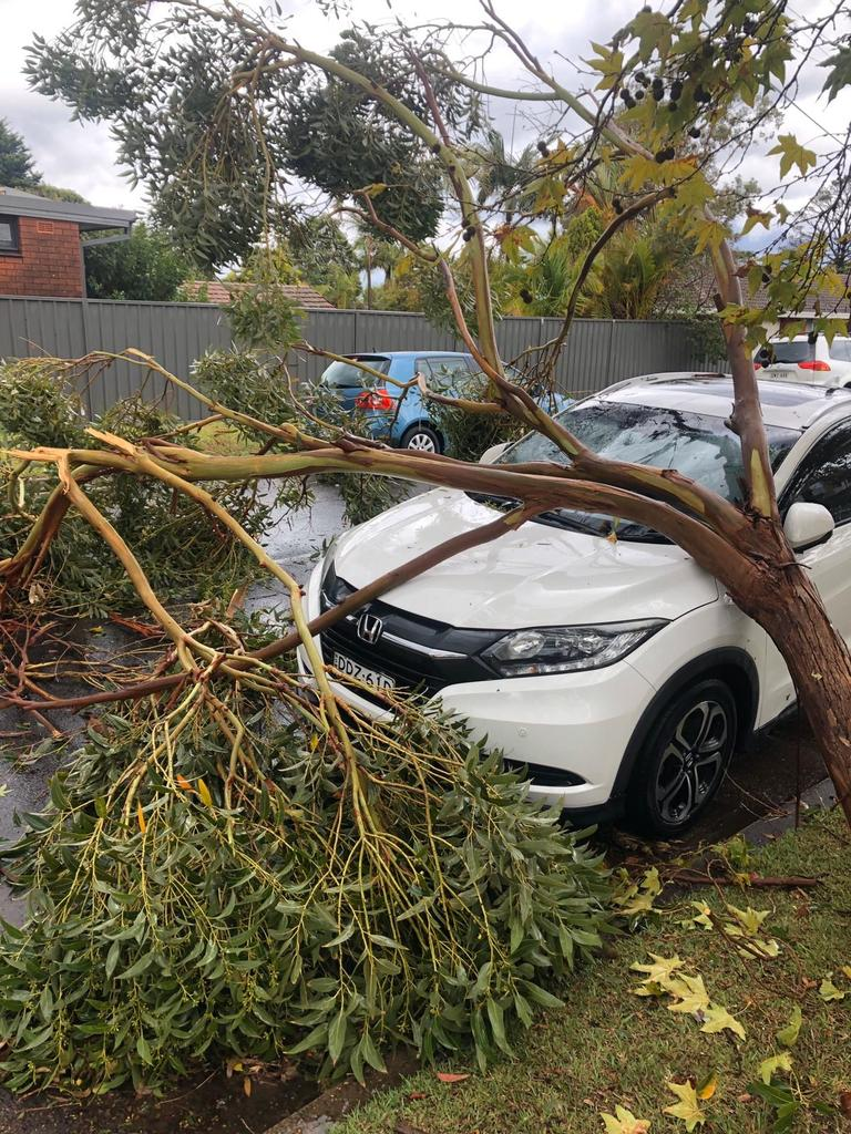 The SES has received more than 100 calls for help. Picture: Kristie Stubbs