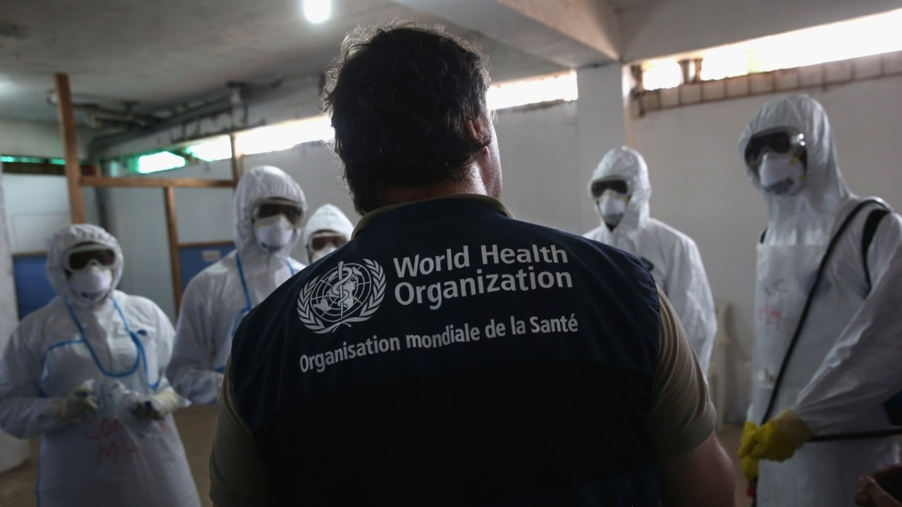 The WHO has been 'wrong at every stage' of the coronavirus pandemic