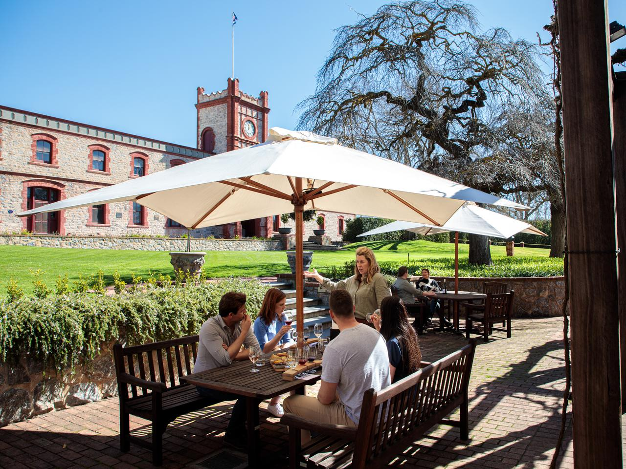 Yalumba branded content for book a table