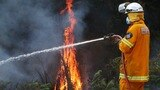 Residents advised to 'leave immediately' as fires burn out of control in WA