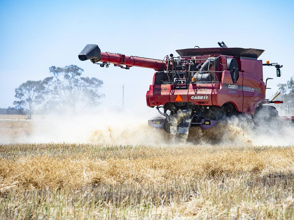 Barley is among the Australian industries hit hard by Chinese trade decisions in 2020. Picture: Zoe Phillips