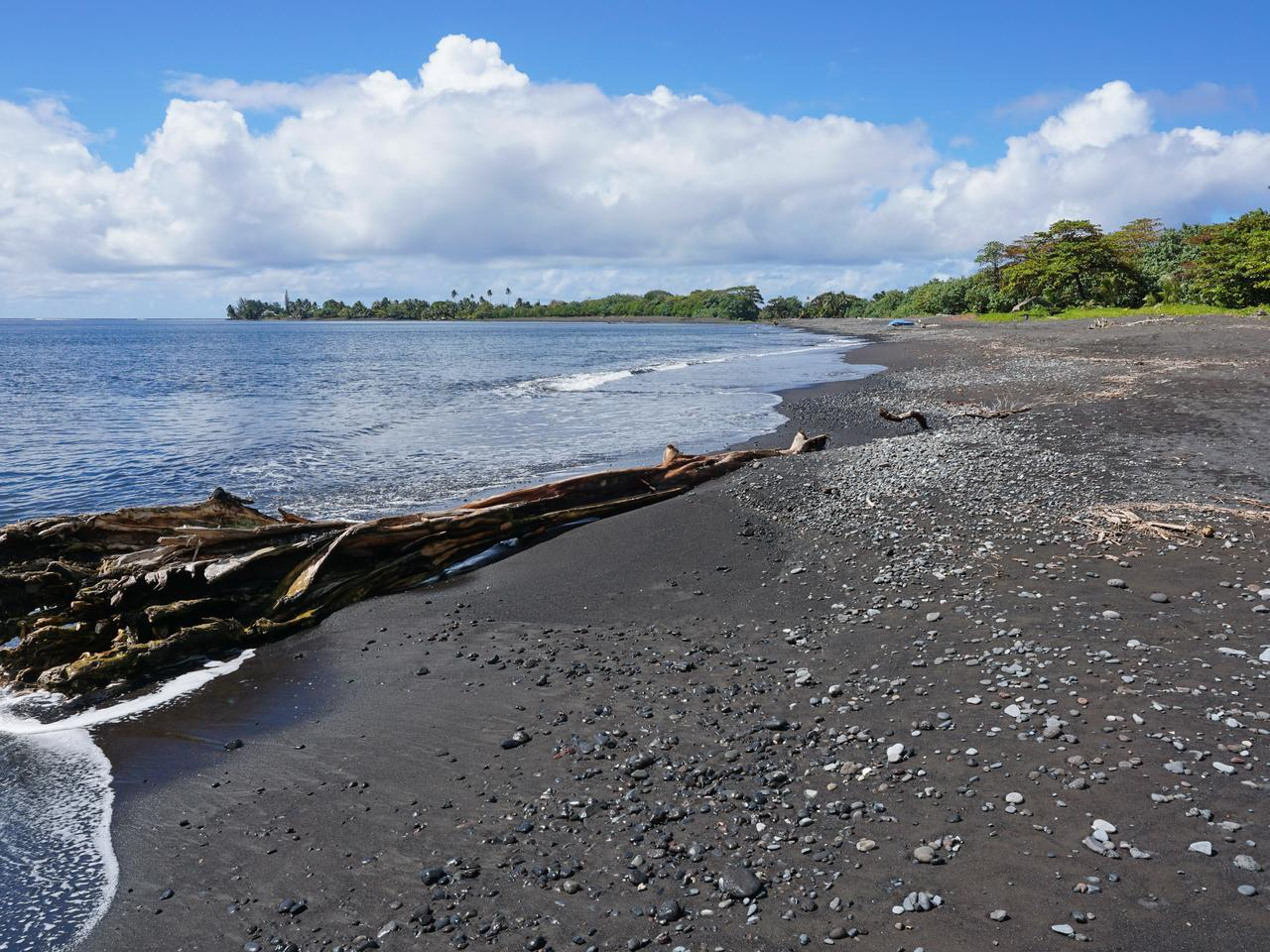 Black sand beach with a driftwood trunk near Tautira village, Tahiti Iti island, French Polynesia, south Pacific ocean