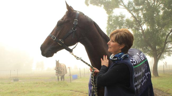 Trainer Joan Pracey is hopeful Asked To Leave will successfully return from a hoof injury