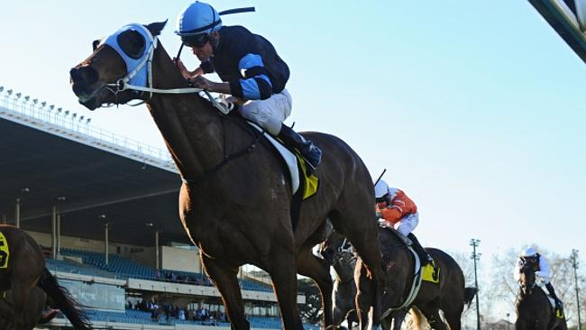 The Cleaner has won the past two runnings of the Dato Tan Chim Nam Stakes.