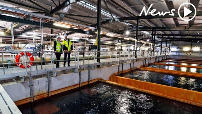 Sydney Desalination Plant provides water to households