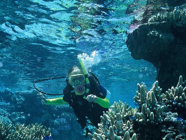 3/10Rowley Shoals, Western Australia From Broome, venture 300km offshore to discover Rowley Shoals, three pear-shaped coral atolls rising from deep water. Navigate steep walls, cracks, and narrow swim-throughs, locking eyes with some 688 species of fish as you sail past 233 species of coral.