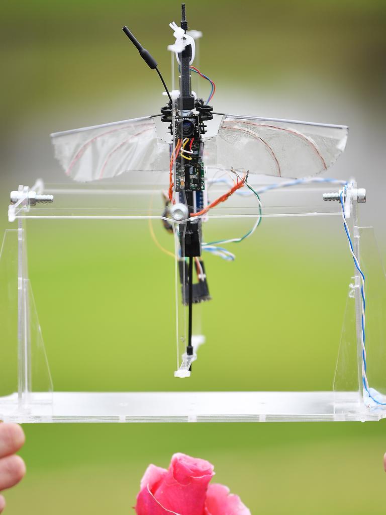Pollination drone