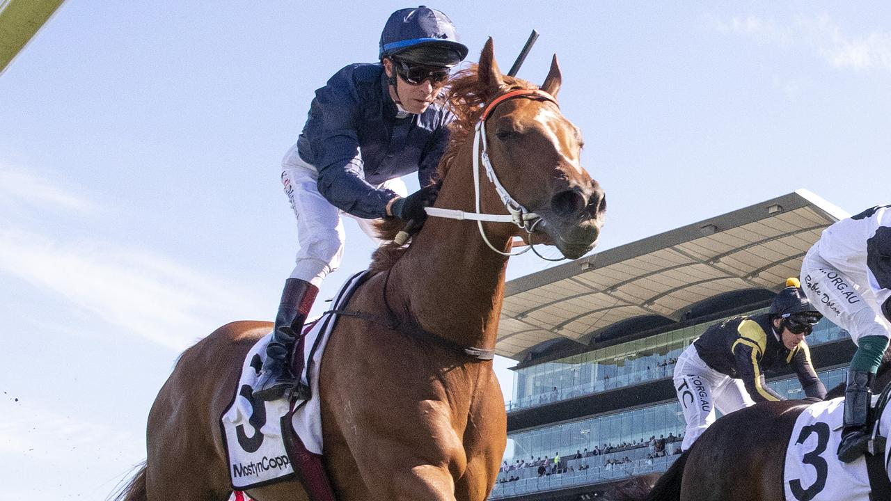 Sydney Racing: All Aged Stakes Day