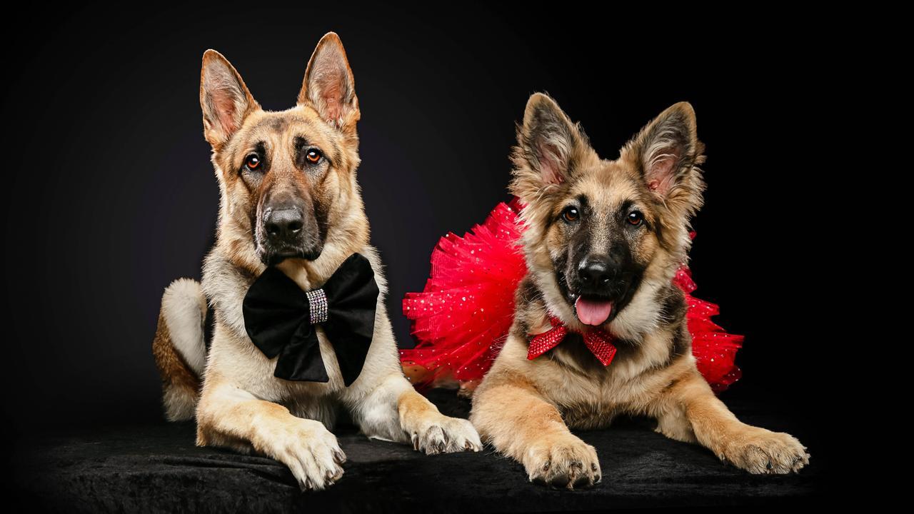 Tia and Rocky. Picture: Studio 1000