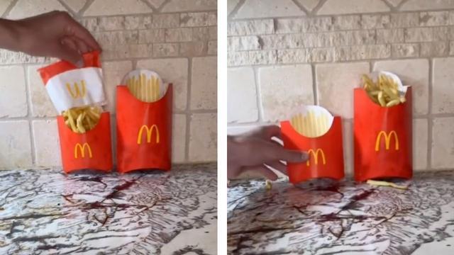 Mcdonald's fries lie tiktok