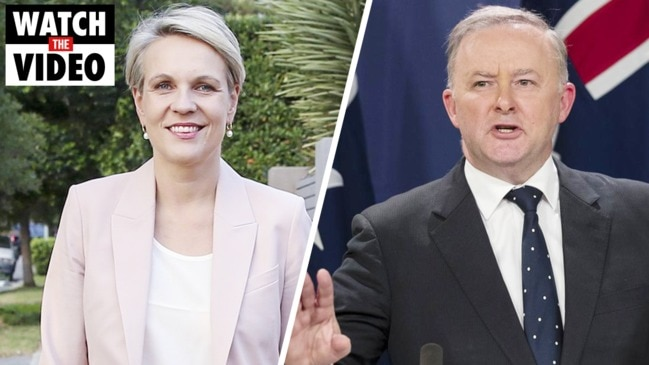 Is Tanya Plibersek set to replace Anthony Albanese?