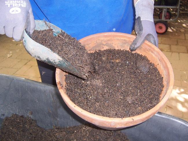 The production of potting mix has been suggested as a possible cause of the smell.