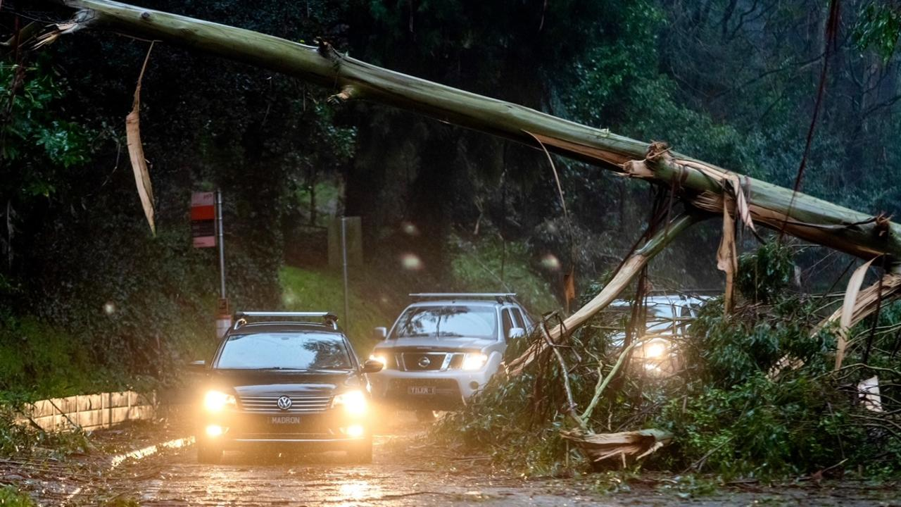 Blackouts could last for days after storm chaos – Herald Sun