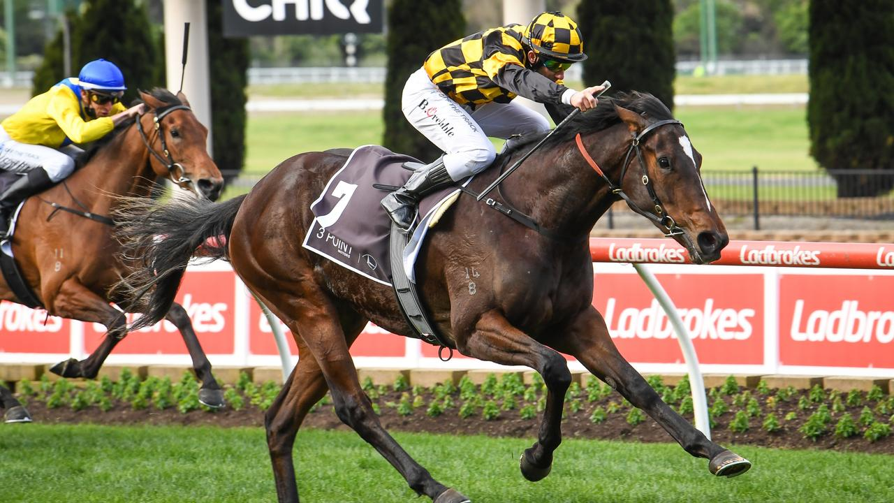 Exciting filly Zouzarella can maintain her unbeaten record in the Jim Moloney Stakes at Sandown. Picture: Racing Photos via Getty Images