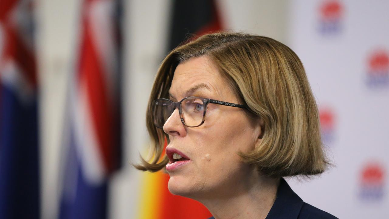 NSW Chief Health Officer Dr Kerry Chant has provided an update on new cases confirmed in the state. Picture: NCA NewsWire/Steven Saphore
