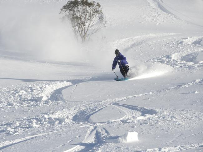 The snow in Thredbo this year is a looooot deeper than anything Torah saw in Russia.