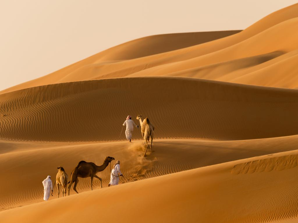 The Liwa desert, home to the world's most golden sands.