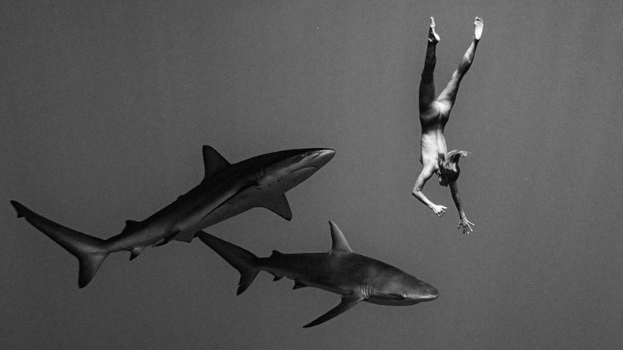Supplied  Fwd: Playboy Shock Model Swims Naked With Dangerous Sharks - HI RES ATTACHED