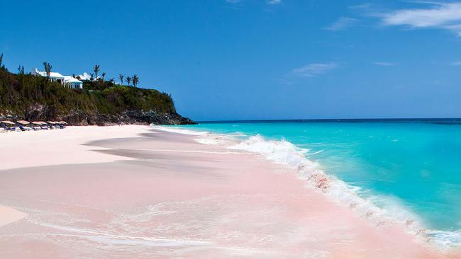 10/14The Pink Beach, Bahamas. Black sand is soooooooo last century. When enough finely ground coral remnants in a blush hue are mixed with fine grained white sand, the result is this rosy glow.